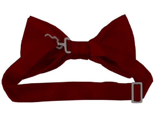 Burgundy Bow Tie back